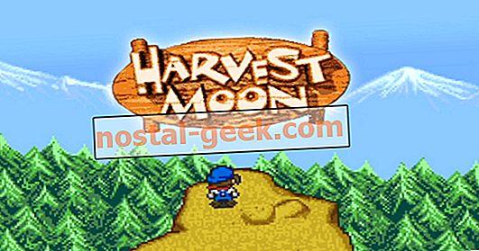 Оценка: лучшие игры Harvest Moon