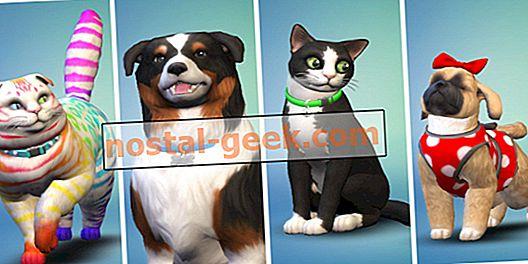 Sims 4 Cats & Dogs: 15 Mod Terbaik Untuk Game