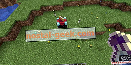 Minecraft Heart Of The Sea The 10 Best Rare Items