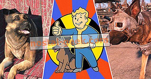 25 verrückte Dinge, die nur Superfans über Hundefleisch von Fallout wussten