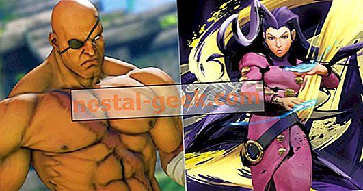스트리트 파이터 : 10 명의 가장 강력한 캐릭터