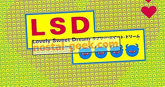 LSD : Dream Emulator가 꿈에서 재현되어야하는 이유